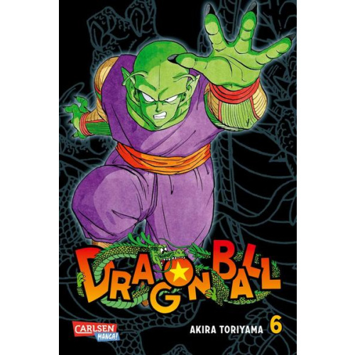 Dragon Ball Massiv 6