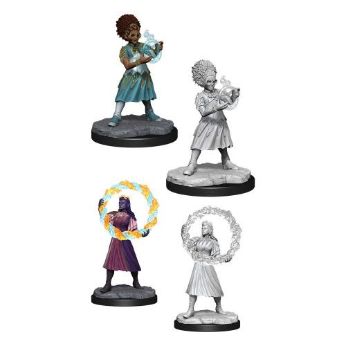 D&D Magic Miniatures Rootha & Zimone